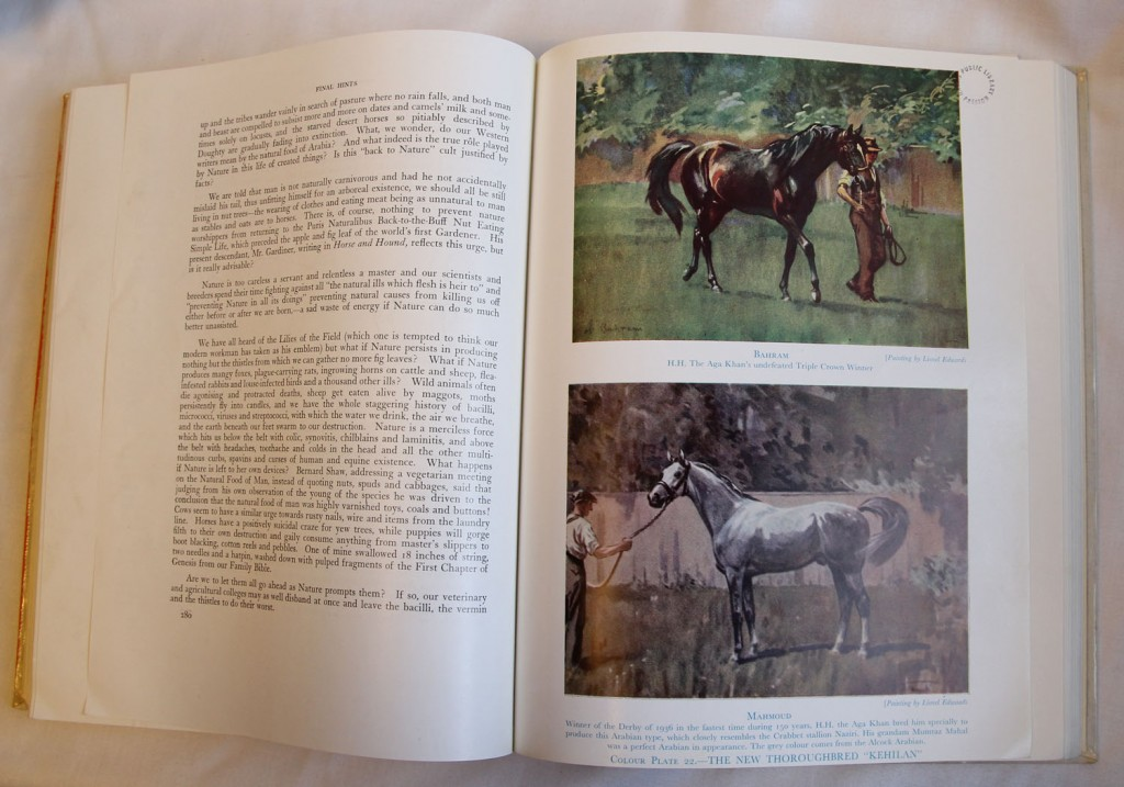 The Authentic Arabian Horse and His Descendants: Photo of Sample Pages & Illustrations